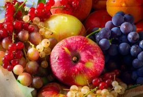 Total Produce: more acquisitions likely