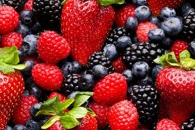 Mexico to get berry innovation boost
