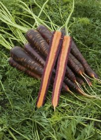 Tesco aims to please with purple carrots