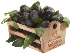 Mexican avocados market for March Madness