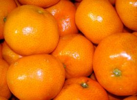US ready for South African citrus