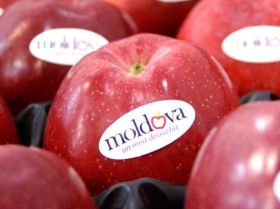 Moldovan fruit entering Russia by back door