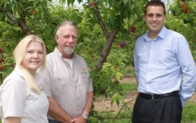 Local gains traction for stonefruit growers