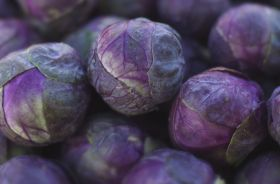 Consumers could win body weight in purple sprouts