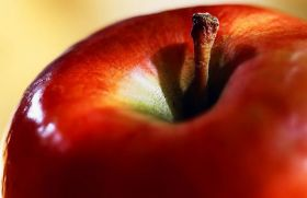 Russia questions Swiss apples' neutrality