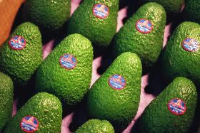 Shortage sends avo prices soaring