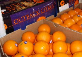Levy increase for Australian citrus