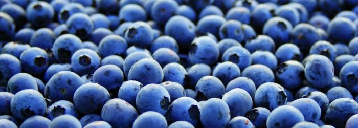 S&A Produce invests in Chilean blues