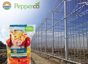 Mastronardi unveils greenhouse venture
