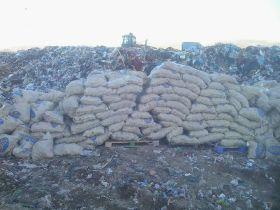 Defra blamed for rejected exports