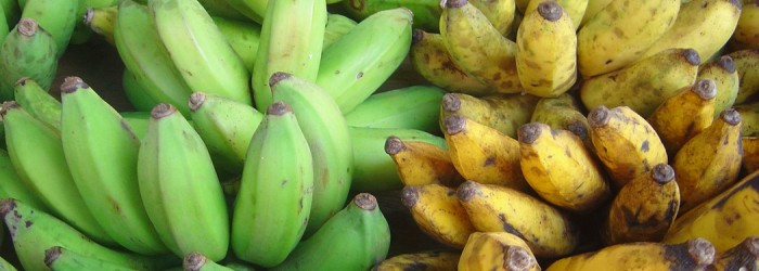 Burundi banana exports on the rise