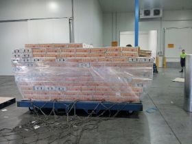 First Aussie mangoes shipped to the US