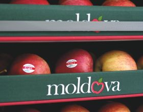 Moldova: Russia restores access for apples