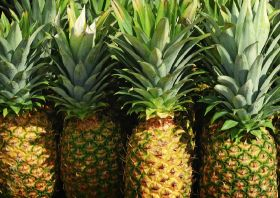 First Malaysian pineapples hit China