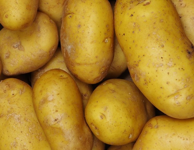 Great potential' for potato exports to Asia
