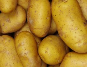 No tariffs on Pakistani potatoes