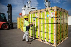 Zespri to trial Northport shipments