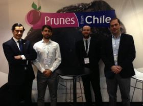 Chilean prunes build UK presence