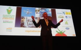 Turbulent times for the vegetable trade