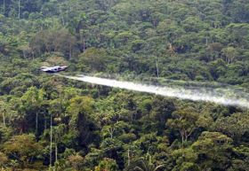 Colombia mulls Roundup ban