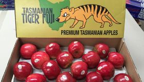 Australian apple exports on the march
