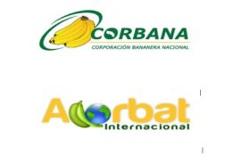 Corbana, Acorbat join forces for banana event