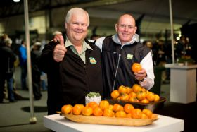 Sales surge for South African sharon fruit