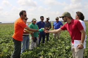 Rijk Zwaan hosts melon event