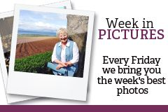 weekinpics16July