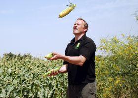 Sweetcorn market in 'huge growth'