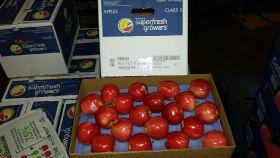 First US Gala apples reach Shanghai