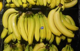 Belize banana group reacts to Fyffes' pull-out