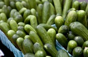 US reliance on fresh produce imports grows