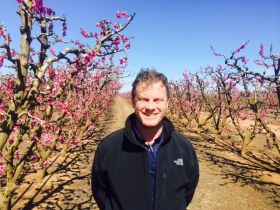 Mark Pidgeon joins Cutri Fruit