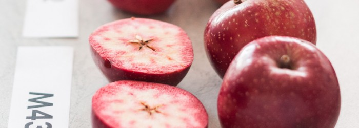 Pink and red-flesh apples set for launch