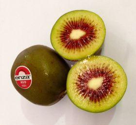 T&G unveils new kiwifruit programme