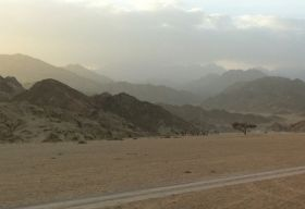 Effect of Sinai plane crash limited