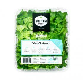 Gotham Greens opens largest urban greenhouse