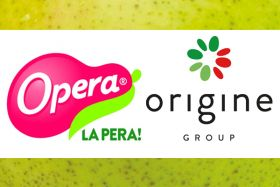 Opera and Origine: contrasting styles for Italian pears