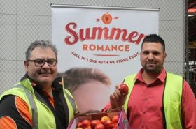 WA stonefruit in for a summer fling