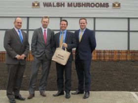 Walsh Mushrooms opens new site extension