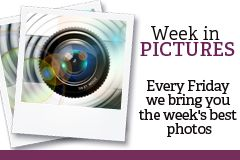 FPJ Week in Pics