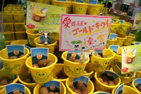 Zespri bucking the trend in Japan