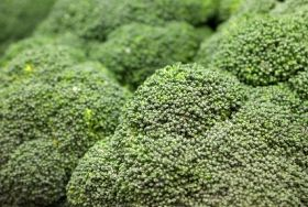 Broccoli 'can help fight common cold'