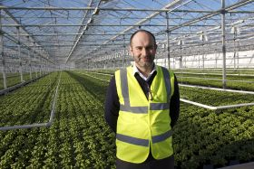 Vitacress to invest £4m in UK salad business