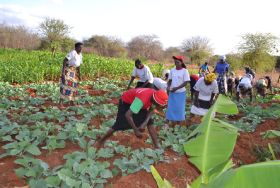 Kenya to welcome major agri-player