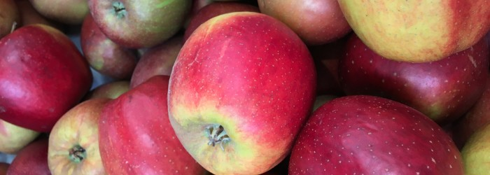 Polish apples failing to find new markets
