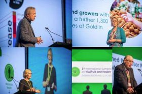 Kiwifruit's health credentials grow