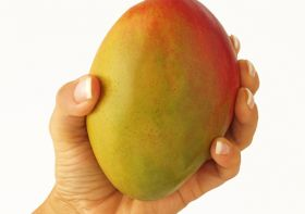 Vietnam mangoes step closer to US