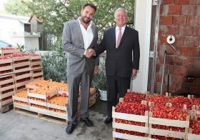 Delhaize secures Serbian cherry supply